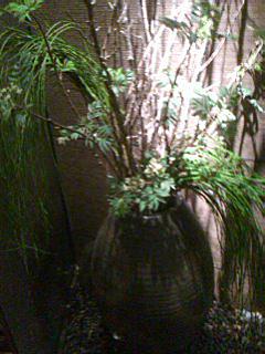 季節の植木変えました